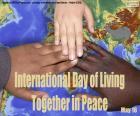 Mezinárodní den sounáše v míru