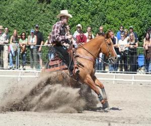 Puzle Reining - westernové ježdění - Ride Cowboy
