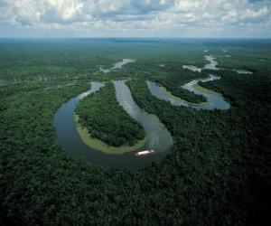 Puzle Rio Amazonas, v areálu ochrany střední Amazonie, Brazílie