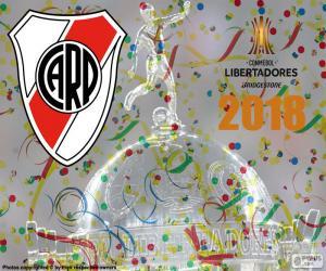 Puzle River, mistr Libertadores 2018