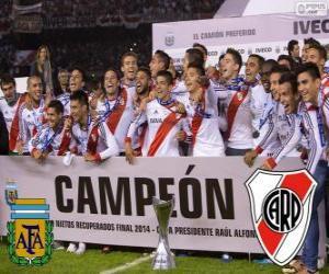 Puzle River Plate, mistr Torneo Final Argentinan 2014