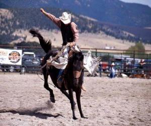 Puzle Rodeo - jezdec v sedle bronc soutěže, divoká jízda na koni