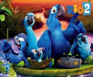 Puzle Rodina Blu v Amazonii