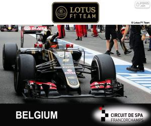 Puzle Romain Grosjean, 2015 Grand Prix Belgie