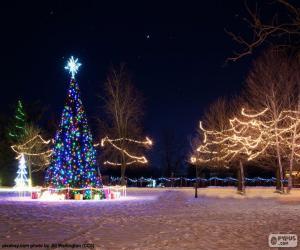 Puzle Rozsvícené vánoční stromky