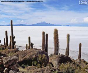 Puzle Salar de Uyuni, Bolívie