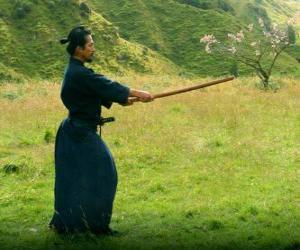 Puzle Samuraj szkolenia