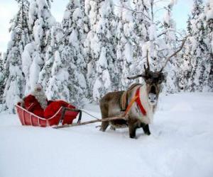 Puzle Santa Claus v jeho saních se soby na sněhu