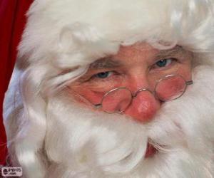 Puzle Santa Claus
