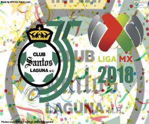Puzle Santos, 2018 Clausura