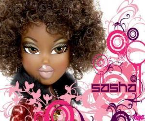 Puzle Sasha hudba je vaše věc, a starat se o všechny kluby, festivaly, hudební skupiny a taneční filmy. Jsou African American