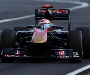 Puzle Sebastien Buemi - Toro Rosso - Hungaroring 2010