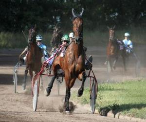 Puzle Sedačka racing