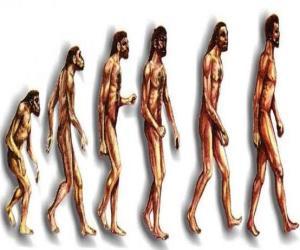 Puzle Sekvence lidské evoluce od Australopithecus Lucy moderní člověk procházející mezi jinými muži v Heidelbergu, Peking, neandrtálský a Cromagnon