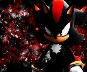 Puzle Shadow je ježek Sonic, jako je, a jeho soupeř