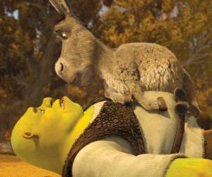 Puzle Shrek a Osel a zadívala se na