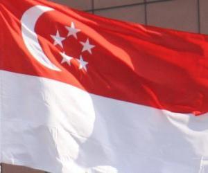 Puzle Singapurská vlajka