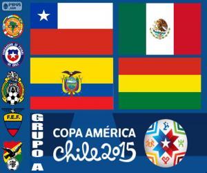 Puzle Skupina A, Copa America 2015