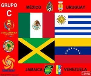 Puzle Skupina C, Copa América Centenario