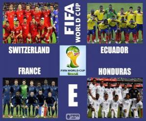 Puzle Skupina E, Brazílie 2014