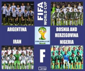 Puzle Skupina F, Brazílie 2014