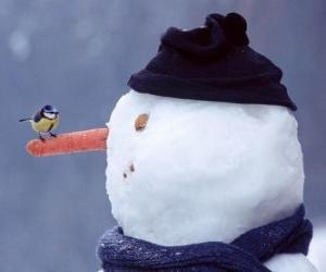 Puzle Sněhulák s ptákem na nos
