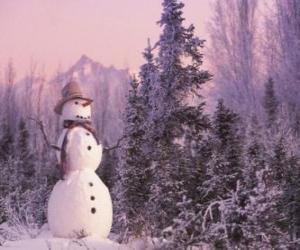 Puzle Sněhulák se sněhem scény