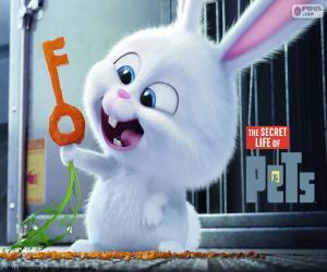 Puzle Snowball, Bílý králík