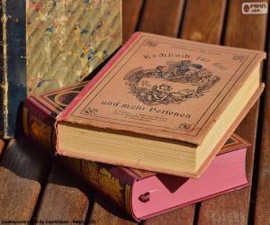Puzle Staré knihy