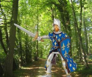 Puzle Statečný a okouzlující prince s jeho štít a meč