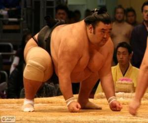 Puzle Sumo zápasník připraven k boji