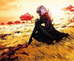 Puzle Super-hrdinka Storm je členem X-Men, také známý jako černý Panter