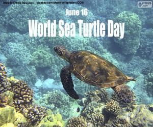 Puzle Světový den mořských želv