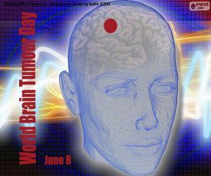 Puzle Světový den nádorů mozku