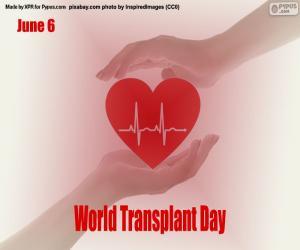 Puzle Světový den transplantace