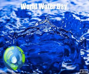 Puzle Světový den vody
