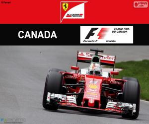 Puzle S.Vettel, Grand Prix Kanady 2016