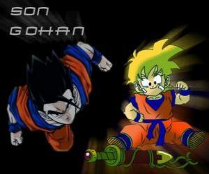 Puzle Syn Gohan, Goku nejstarší syn, bojovník, napůl člověk a napůl Saiyan.