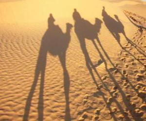 Puzle Tří moudrých jízda velbloudy na své cestě do Betléma