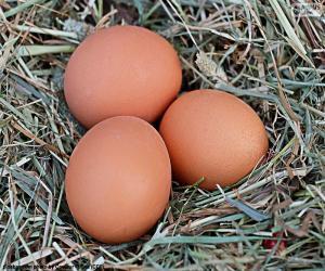 Puzle Tři vejce