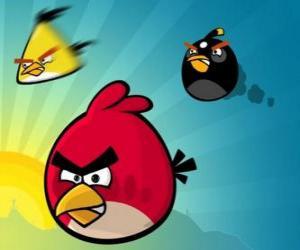 Puzle Tři z ptáků z Angry Birds