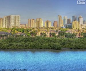 Puzle Tampa, Spojené státy