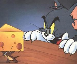 Puzle Tom kočka překvapil Jerry myši při kousek sýra