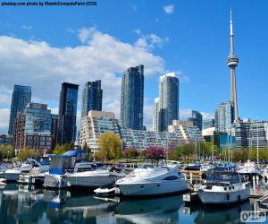 Puzle Toronto, Kanada