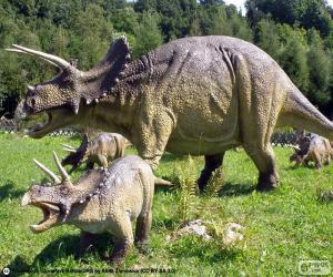 Puzle Triceratops