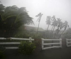 Puzle Tropické bouře
