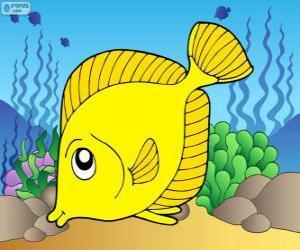 Puzle Tropické ryby