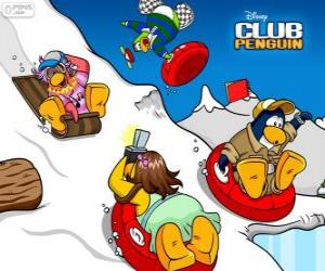 Puzle Tučňáci sáňkování dolů na saních