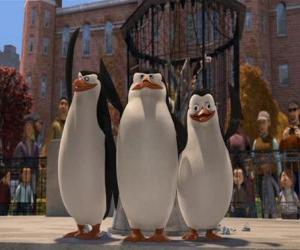 Puzle Tučňáci z Central Park Zoo
