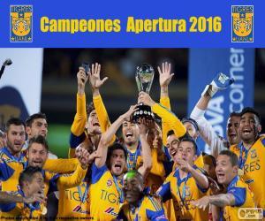 Puzle UANL Tigres, Apertura 2016